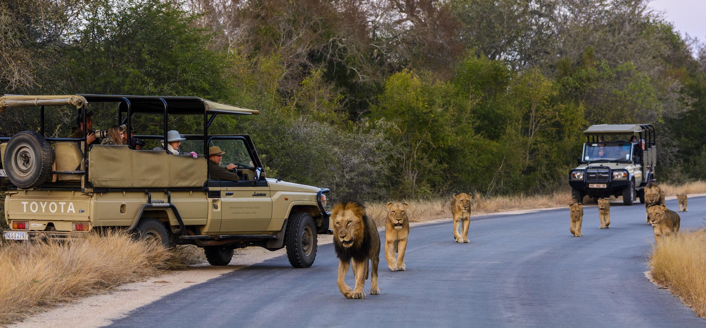 Disputa de terra das zonas Fronteiriças do Kruger
